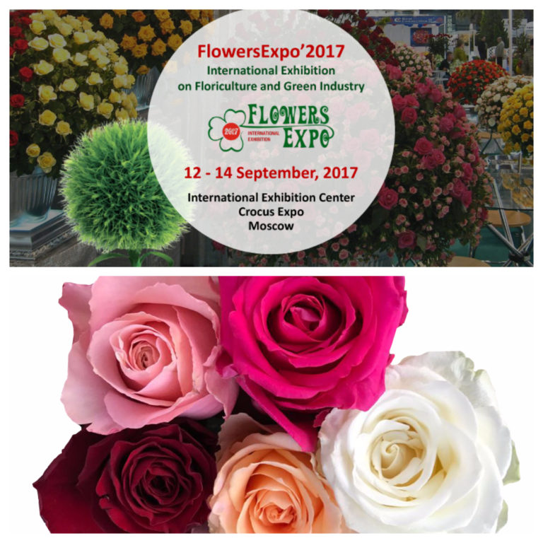 United Selections: Upcoming Flower Events