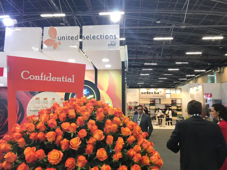 United Selections' Presence Felt at Proflora 2017
