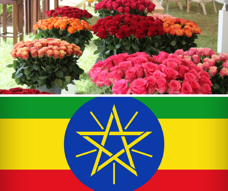 Welcome to our open day and social event in Ethiopia