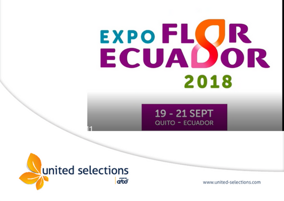Flower Expo in Ecuador, 2018