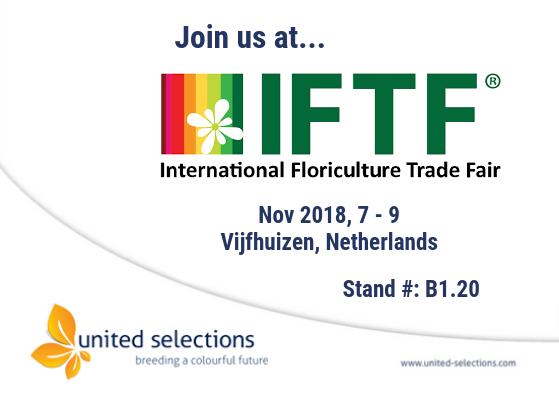 IFTF 2018 in Vijfhuizen, Holland