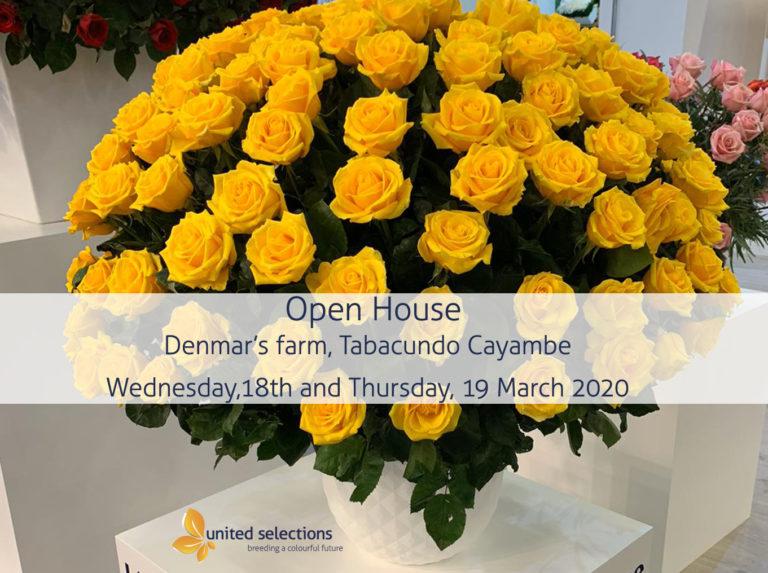 Welcome to Our Open House in Denmar, Ecuador